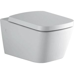 Сиденье для унитаза с микролифтом и крышкой Симпл Ю, дюропласт, стальные хромированные шарниры, белый фото
